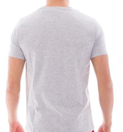 Leone - T-Shirt (SZARY MELEANŻ)